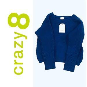 Crazy 8 Boys Toddler Sweater